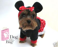 Disney Minnie Mouse Dress Chihuahua Yorkie Dog Coat Small Halloween Costume CUTE
