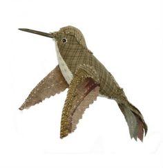 Ann wood - hummingbird