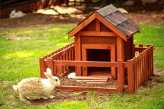 It's easy to build your own rabbit hutch. A good rabbit hutch provides shelter, is easy to clean and resists moisture.
