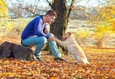 How to choose the best dog trainer for your puppy