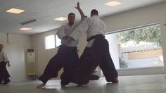 Vassilis Nykteris 5th Dan 'Stay with the flow 2' http://www.aikidoacademy.gr
