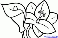how to draw flowers step by step | How to Draw Lilies For Kids, Step by Step, Flowers For Kids, For Kids ...