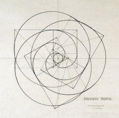 L'espiral de Fibonacci seria perfecte. Pot ser no aquesta pero alguna xula