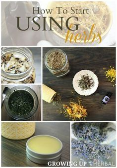"""""""How To Start Using Herbs"""" Blog Series 