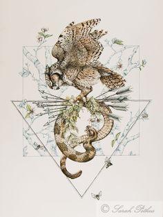 Owl Snake Illustration - 11 x 14 art reproduction by NestandBurrow on Etsy https://www.etsy.com/listing/208877885/owl-snake-illustration-11-x-14-art