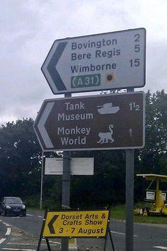 OMG!!! Road trip detour! Turn left! TURN LEFT!!!