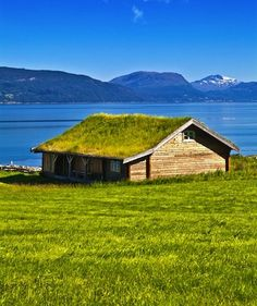 This living roof makes the shoreline home blend right in with its surroundings.  While our #SteelRoofs are considered 'green,' ours don't have to be fertilized!  http://www.quarve.com
