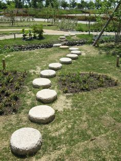 Raised stepping stones