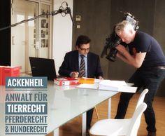 Ebenholz Anwalt