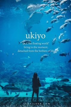 50 Unusual Travel Words with Interesting Meanings – I am Aileen UKIYO: 50 Unusual Travel Words with Interesting Beautiful Meanings — Ever been at a loss for words to describe your expe. The Words, Weird Words, Best Words, Wallpaper Travel, Iphone Wallpaper, Tattoo Word, Words In Different Languages, Different Words, Portuguese Words