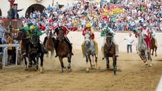 Il Palio di Asti - Domenica 6° Settembre 2020 Camel, Horses, Animals, Dinner, Animales, Animaux, Camels, Animal, Animais