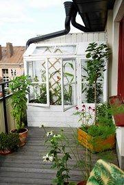 """Snickra ett enkelt växthus av några gamla fönster! Det kan få plats på en liten balkong och ändå ge en stor skörd av solmogna tomater och gurkor. Ur boken """"Urban odling"""" av Ulrika Flodin Furås och Mattias Gustafsson."""