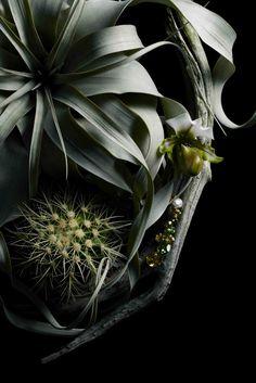 What's up! trouvaillesdujour: Makoto Azuma: Botanical Sculpture with Swarovski Elements