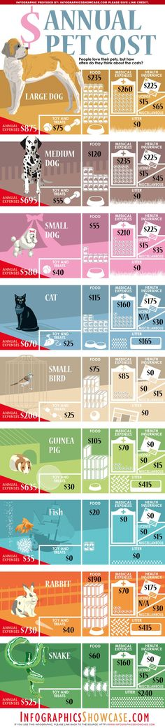 Annual Pet Cost: Cats, Dogs, Birds, Fishes, Rabbits are some of the most popular pets we like to host. It's good to know how much it costs on average owning and caring of a pet per year. Some of the typical expenses like food, medical treatment, heatlh insurance, toys and litter vary and are largely depending on pet size. Doing some calculations and weighing up our personal finance before buying a pet is a good practice.