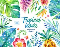 44 Floral Elements watercolor by StarJamforKids Animals Watercolor, Floral Watercolor, Watercolour, Tropical Leaves, Tropical Flowers, Fruit Clipart, Scrapbooking Stickers, Color Secundario, Karten Diy