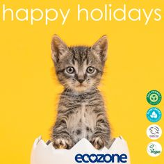 Happy Holidays!   With love, Ecozone Get all your Ecozone Spring Cleaning essentials at 33% off via www.ecozonedirect.com  Shop now! #ecofriendlyproducts #plantbasedingredients #crueltyfree #veganproducts #makeyourhomeanecozone #greencleaning #sustainability