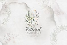 Watercolor Botanical Collection by Julia Dreams on @creativemarket