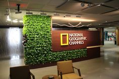 National Geographic Channel » GSky Plant Systems, Inc. - The leading provider of Green Walls in North America