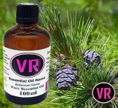 100ml Pine Scotch Pinus sylvestris Essential Oil by VandaRoseAroma