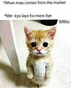 434 Best Urdu quotes images in 2019   Quotes, Urdu quotes, Manager