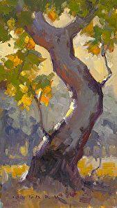 The Pose by Jim Wodark Oil ~ 12 x 7 Oil Painting Trees, Watercolor Paintings, Paintings Of Trees, Watercolor Artists, Indian Paintings, Abstract Paintings, Painting Art, Guache, Tree Art