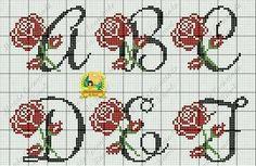 Mono Rosas1