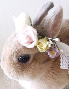 Pets flower crown wedding spring rose doll hair accessories
