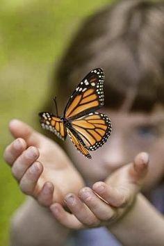 Lindo é quando alguém escolhe pousar ao teu lado, podendo voar. Podendo encontrar até outros ninhos, outros caminhos, escolhe ficar.