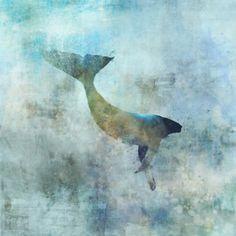 Sea Whale 01 Giclee Fine Art Print by krokoart on Etsy 3 Canvas Art, Canvas Prints, Sea Whale, Blue Whale, Street Art, Organic Art, Wildlife Art, Illustrations, Find Art