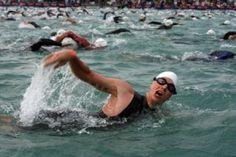 competición de natación en mar libre