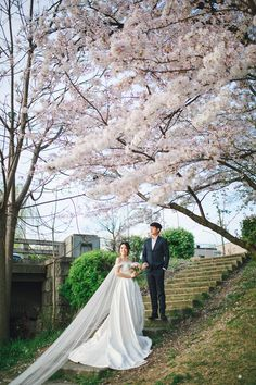 Beautiful sakura engagement session // Ghia Jun and Zee Yin's Engagement Shoot in Kyoto, Japan