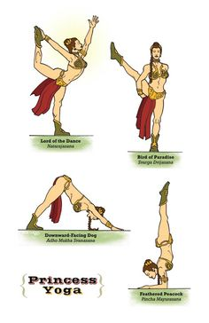 Star Wars Yoga: The Illustrated Edition