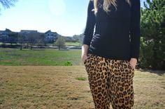 Leopard is always a good idea. Always.
