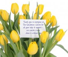 Say Thanks with Tulips. Thank You Flowers, Tulips, Thankful, Sayings, Plants, Lyrics, Plant, Tulip, Planets