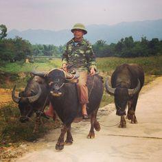 Cowboy, Dien Bien Phu, Vietnam