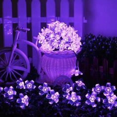 Solar garden lights from Apollo Box -Blossom Flower Solar Garden Lights. Perfect pretty solar flower lights to bewitch our backyard at night. A must have for sprucing up our backyard hangout space. Christmas Garden, Outdoor Christmas, Christmas Lights, Christmas Decorations, Christmas Ideas, Solar Panels For Home, Best Solar Panels, Solar Flower Lights, Fairy Lights