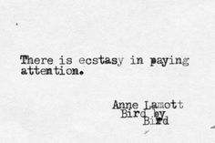 There is ecstasy in paying attention. Anne Lamott, Bird by Bird Rebel, Carol Ann Duffy, Flow State, Anne Lamott, John Ruskin, Mary Oliver, Queen, Ups And Downs, Stress Management