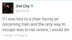 Another bizarre and hilarious Owl City tweet ( #owlcity #tweets #raisins )