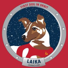 Laika, The First dog in space.