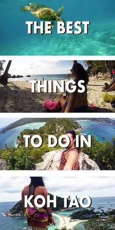 The little island that you can't skip in Thailand! Koh Tao is filled with activities for every traveller. ***************************************** Koh Tao Thailand | Koh Tao things to do | Koh Tao diving | Koh Tao beaches | Thailand travel | Thailand des