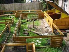 keeping rabbits outside | beautiful outdoor setup. I would build several of these and rotate ...