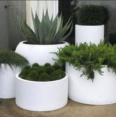 Terrace Garden, Garden Beds, Backyard Planters, Plant Nursery, Plant Decor, House Plants, Garden Plants, Garden Projects, Gardens