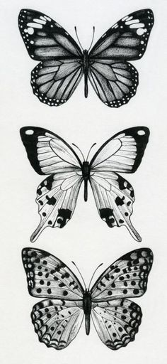 64 Ideas Tattoo Thigh Butterfly Tatoo 64 Ideen Tattoo Oberschenkel Schmetterling Tatoo Category: Drawing This image has get Tiny Butterfly Tattoo, Butterfly Sketch, Butterfly Design, Henna Butterfly, Papillon Butterfly, Butterfly Sleeve Tattoo, Butterfly Tattoo Meaning, Morpho Butterfly, Floral Tattoos
