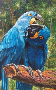 """Tulio Dias   """"Banquet Macaws""""   55x85-Óleo sobre tela-2016      Tulio Dias   """"Tasting a fruit""""   55x85-Óleo sobre tela-2016      Tuli..."""