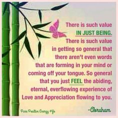 There is such value in just being. there is such value in getting so general that there aren't even words that are forming in your mind or coming off your tongue. So general that you just feel the abiding, eternal, everflowing experience of love and appreciation flowing to you. -Abraham