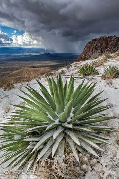 Approaching snow storm over Roosevelt Lake from the Parker Cliffs, Tonto National Forest, Arizona