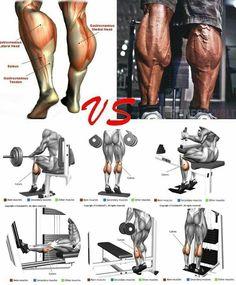 Fitness Workouts, Leg Day Workouts, Weight Training Workouts, Biceps Workout, Chest Workouts, Fun Workouts, Workout Kettlebell, Gym Fitness, Gym Workout Chart