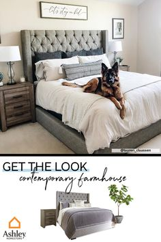 You can never go wrong with neutrals, and we think this pup agrees! Layer neutral tones in your master bedroom for a timeless look that is easy on the eyes. The subtle shades create a cozy atmosphere… Master Bedroom Design, Home Decor Bedroom, Bedroom Furniture, Living Room Decor, Barbie Furniture, Furniture Legs, Garden Furniture, Furniture Design, Master Suite