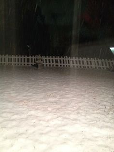 Tracey says the snow is coming down steady in her backyard in Port Republic, VA.  #WHSVsnow