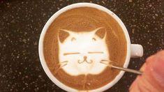 Kitten latte art